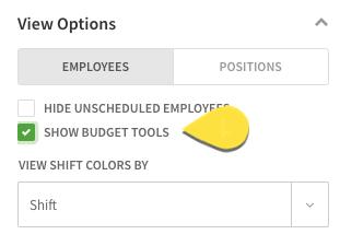 Show budget tools checkbox