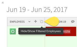 Hide/Show Filtered Employees button